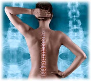 chiropractic back