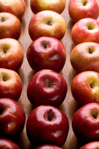 Picture of Apples for Farmers Markets in 2012 in Salt Lake Utah